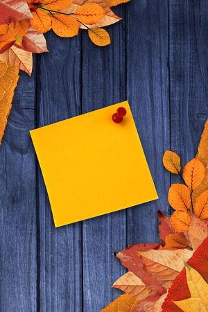 digital image: Digital image of pushpin on yellow paper  against autumn leaves on wood