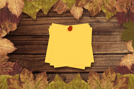 inscribe: Sticky note with red pushpin against autumn leaves on wood