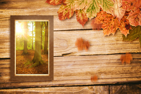 autumn scene: Glass window against white background against autumn scene