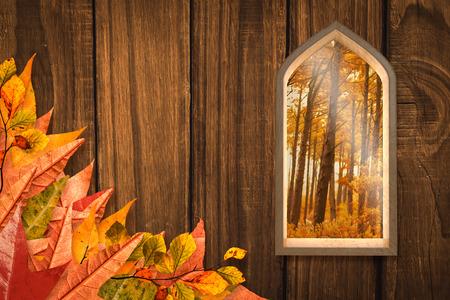 autumn scene: Arch shape window against autumn scene
