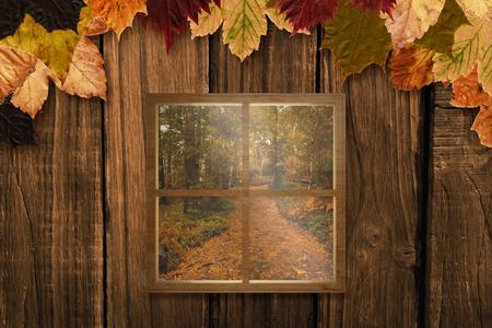 autumn scene: Square shape glass window against autumn scene