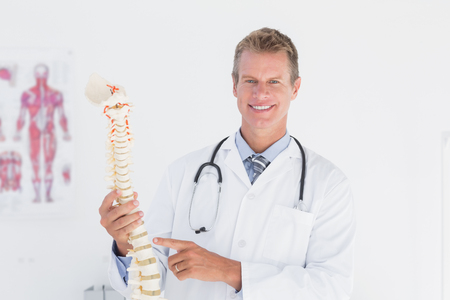 anatomical: Happy doctor showing anatomical spine in clinic Stock Photo