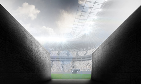 entrances: Arena tunnel against rugby stadium