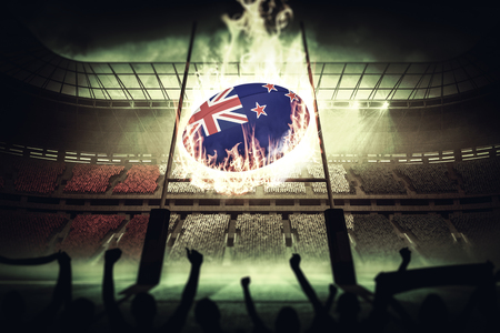 euphoria: Silhouettes of football supporters against rugby pitch Stock Photo