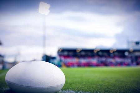 pelota rugby: pelota de rugby contra el terreno de juego