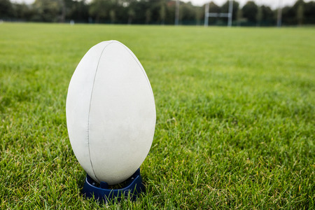 Rugby ball on the pitch at the park