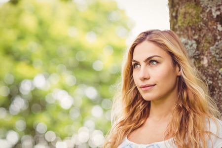 young tree: Beautiful woman looking away while standing by tree in park