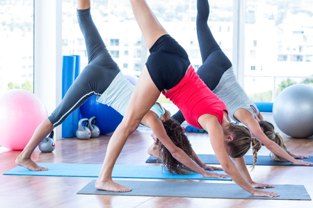 downward: Women doing half downward dog posture in fitness studio