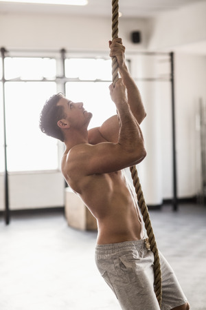 crossfit: Side view of muscular man doing rope climbing in crossfit gym Stock Photo