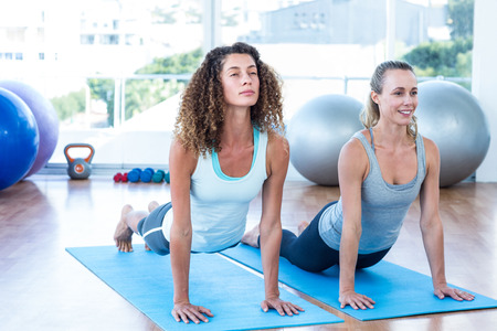 fit women: Fit women doing cobra pose in fitness studio