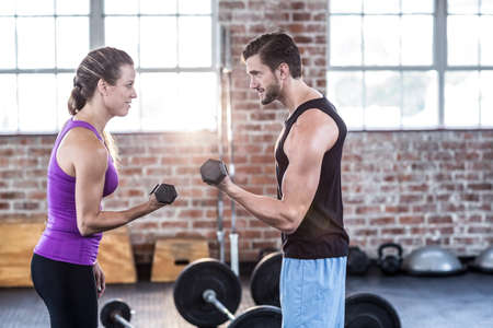 punched out: Fit people doing dumbbell exercises in crossfit gym LANG_EVOIMAGES
