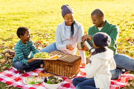 familia pic nic: Familia sonriente joven haciendo un picnic en un d�a oto�os Foto de archivo