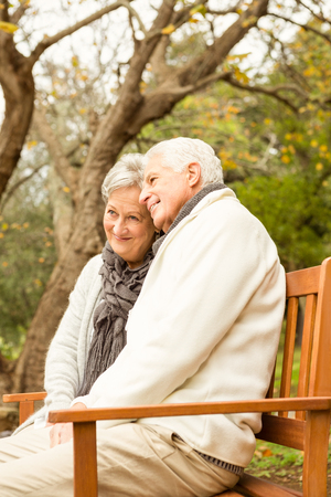 couple nature: Senior couple in the parkon an autumns day