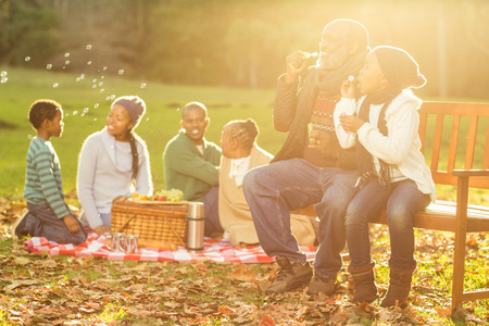 senior adults: Happy family having a picnic in parkland