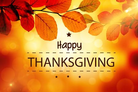 thanksgiving heureux contre les feuilles d'or