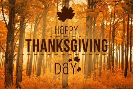 Happy thanksgiving against autumn scene Stock Photo - 47543310