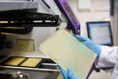 biochemist: Scientist examining a large slide in the lab
