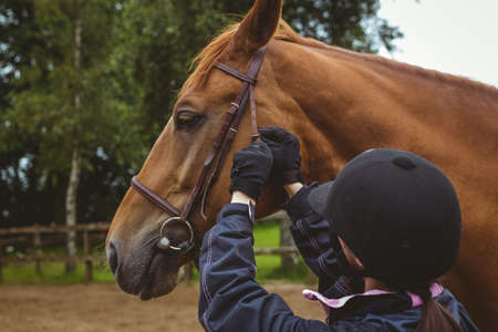 reigns: Female rider fixing reigns in the countryside