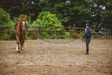 reigns: Female rider training her horse in the countryside LANG_EVOIMAGES
