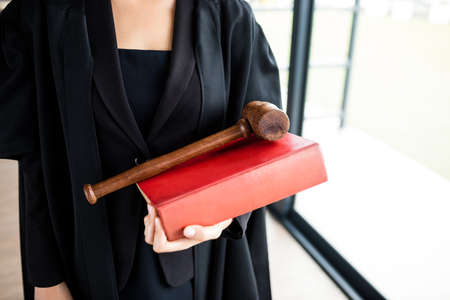 female lawyer: Female lawyer showing her book and her hammer in her firm