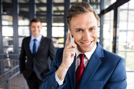 business: Portrait of smiling businessman having a phone call in office