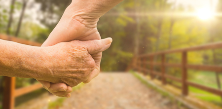 long lasting: Elderly couple holding hands against bridge with railings leading towards forest