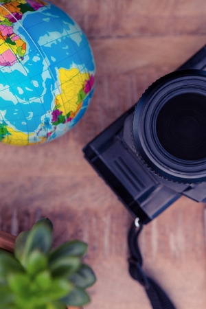 potted plant: Camera and globe by potted plant on table