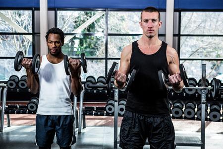 men exercising: Muscular men exercising with dumbbells at gym Stock Photo