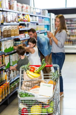 grocery baskets: Cute family doing grocery shopping together at the supermarket Stock Photo