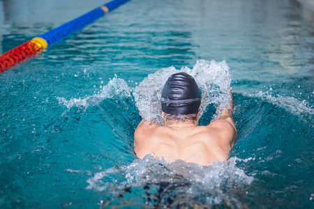 lane marker: Rear view of man swimming in the pool