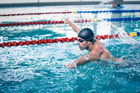 lane marker: Handsome man swimming in the pool