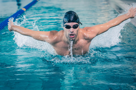 lane marker: Fit man swimming in the pool