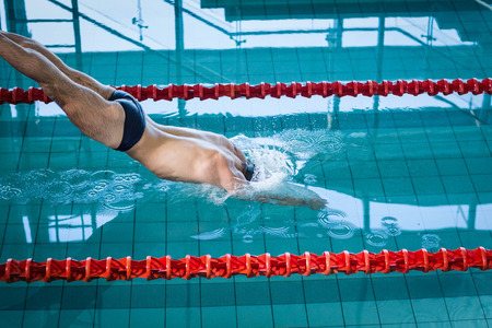 lane marker: Fit man diving in the pool