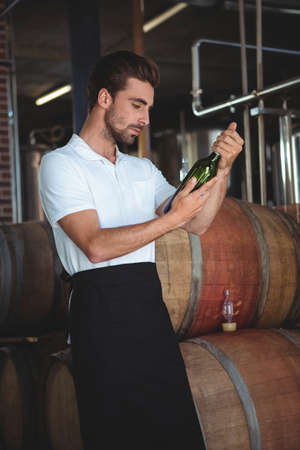 brewer: Handsome brewer checking at a wine bottle in a brewery