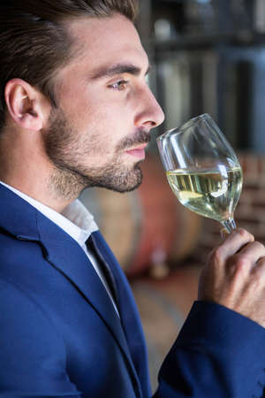 well dressed: Well dressed man examining glass of wine at the winefarm