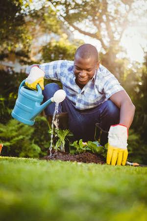 regar las plantas: Apuesto hombre regar las plantas en el jardín