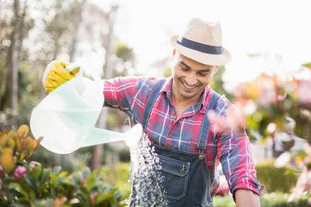 regar las plantas: El jardinero del hombre regar las plantas en el jardín