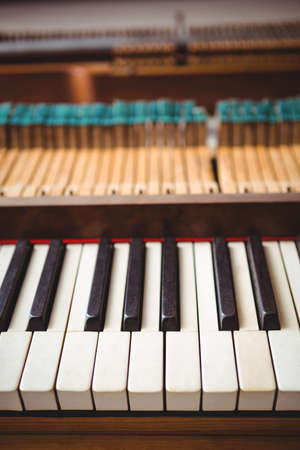 octave: Black and white keyboard of a piano