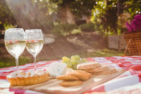 picnick: Tray with cheese and white vine for a pic-nick