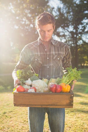 man carrying box: Handsome man carrying box of vegetables in the park
