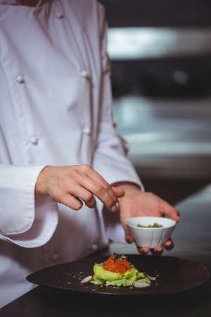 sprinkling: Chef sprinkling salt on dish in commercial kitchen LANG_EVOIMAGES