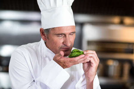hotel staff: Chef smelling fresh basil in a commercial kitchen