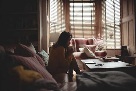 cosy: Brunette using tablet while drinking coffee at home LANG_EVOIMAGES