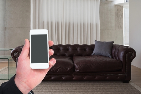 domicile: Man holding smartphone in living room at home