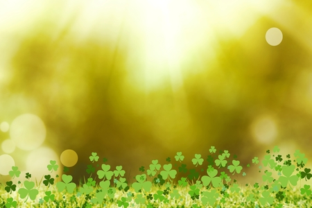 st  patty: Picture of shamrock for st patricks day Stock Photo