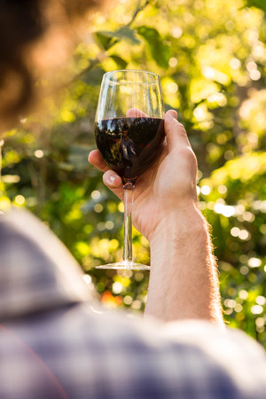 weekend activity: Man holding a glass of red wine in the garden Stock Photo