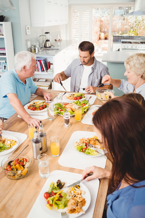 adult offspring: Family sitting at dining table in home