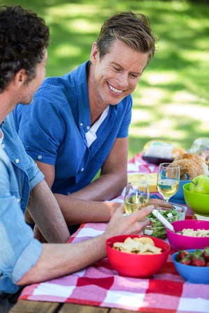 Friends having a picnic with wine in a park