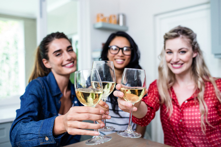 potrait: Potrait of happy young female friends toasting wineglass at table in house