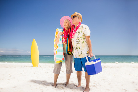 icebox: Senior couple holding icebox on the beach Stock Photo